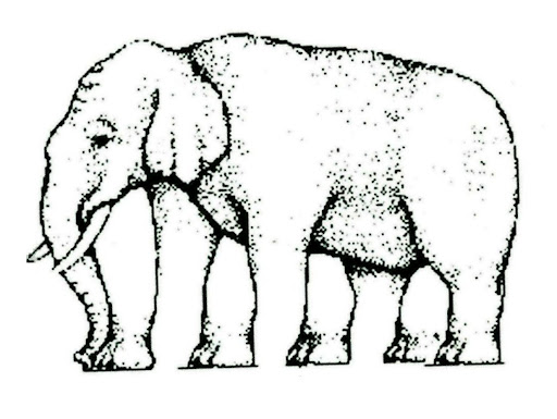 Elephant Leg Illusion