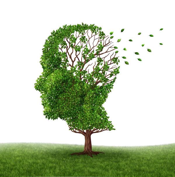 Memory loss impact on diet