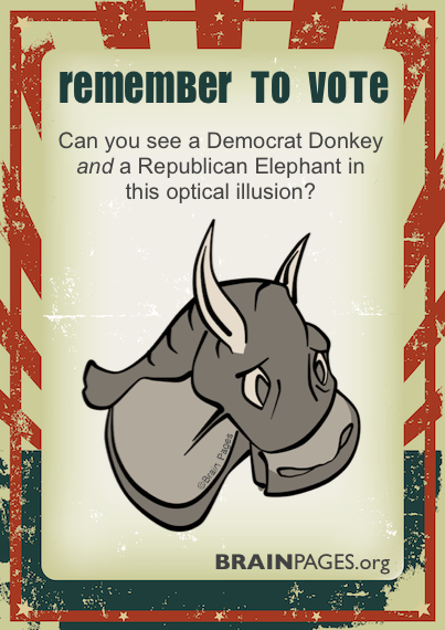 illusion democrat republican optical feel computer donkey save vote