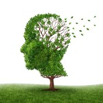 Memory Loss – What Is Normal And What Is Not